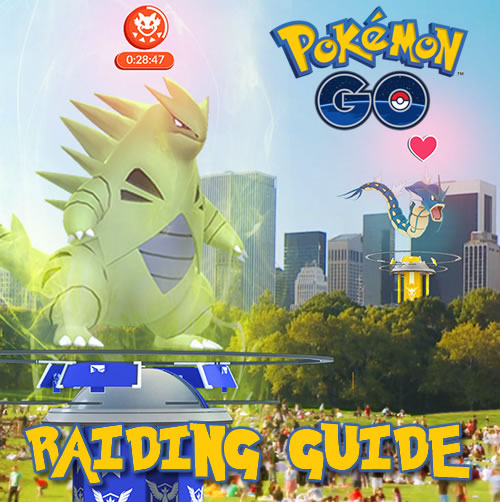Pogo Raiding Guide
