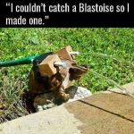 Couldnt catch a blastoise
