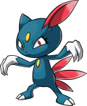 215Sneasel Pokemon Ranger Guardian Signs