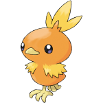 255Torchic RS
