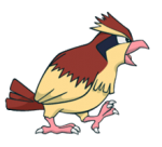 016Pidgey Channel
