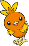 255Torchic Dream