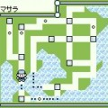 pokemon green screenshot 28
