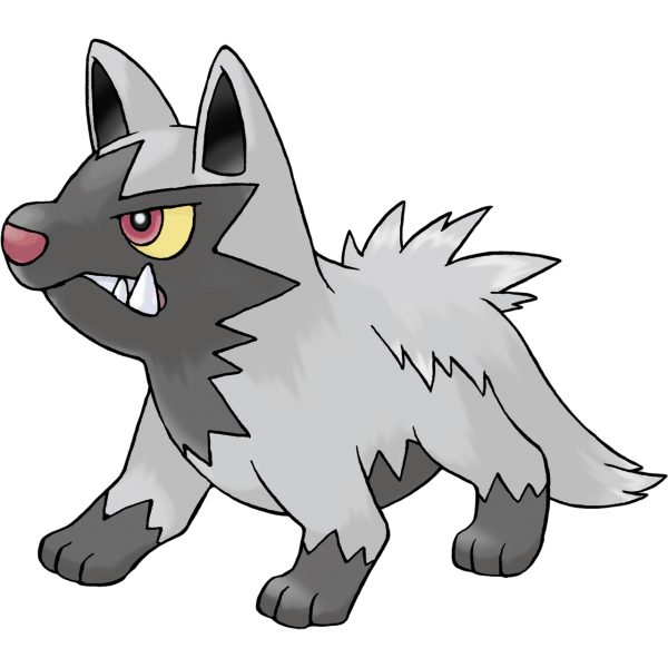 The wild Poochyena who attacked Birch